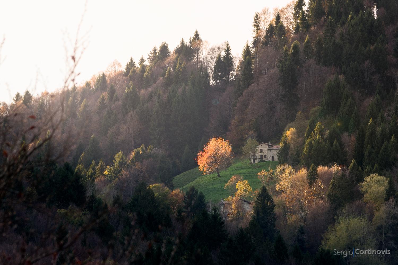 Paesaggio autunnale in Val Serina